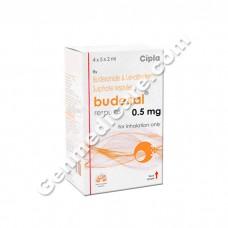 Budesal Respules 0.5 mg, Asthma